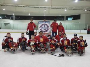 hockeyDVHL2014banner
